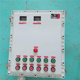 BXND撬裝設備防爆配電箱