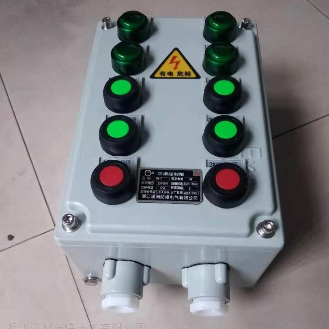 防爆控制箱4灯6钮