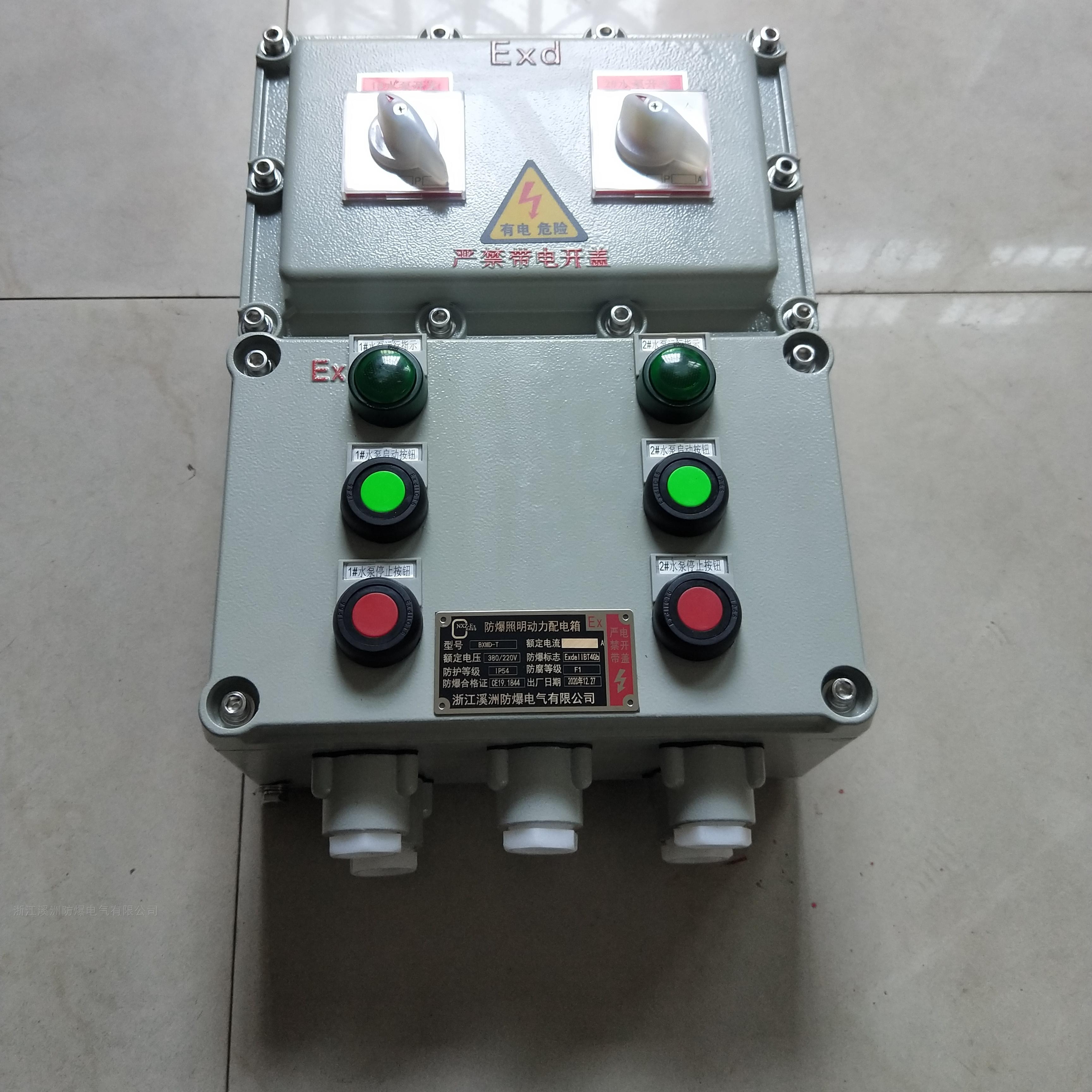 水泵控制防爆照明动力配电箱
