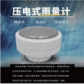 BYQL-YL J温州压电式雨量计