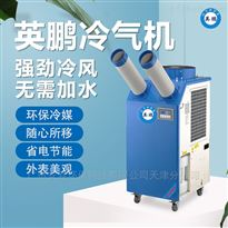 YBLQ-4.0双管单相防爆冷气机
