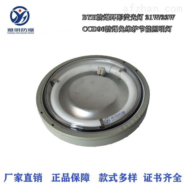 CCD96-20W21W22WIP65防爆免維護節能照明燈
