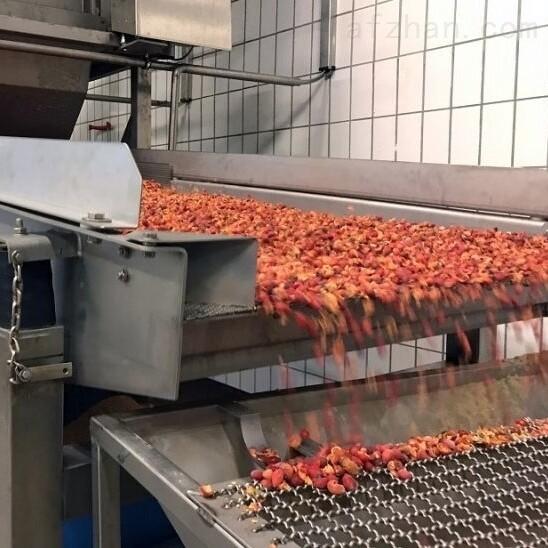 Netter Vibration振动器在食品行业的应用