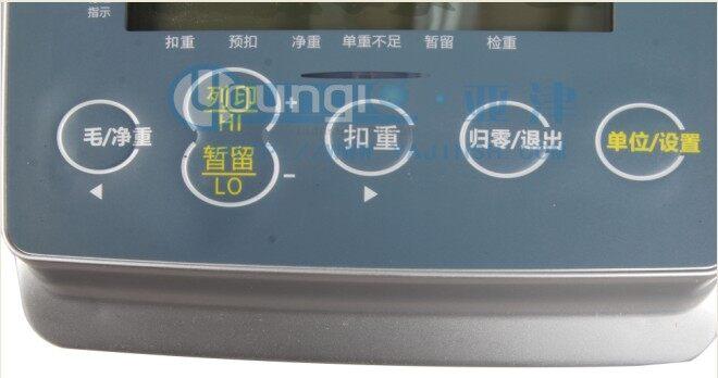T310i计重显示器