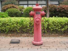 消防栓 摄影:俞焜