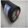 JHS电缆2*4 JHS防水电缆2*6价格