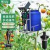 简易施肥器厂家生产大棚蔬菜滴灌水肥一体机